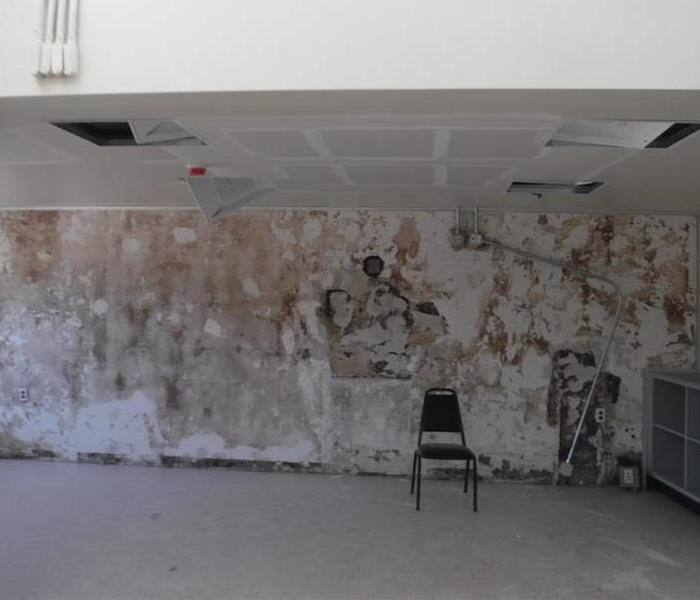 Mold Damage in Commercial Building After