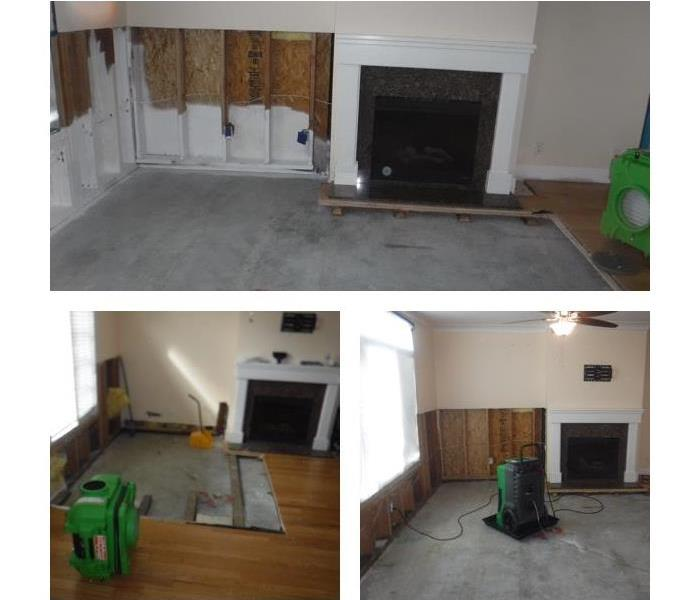 Mold Remediation in San Mateo County