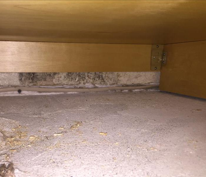 Hidden Mold in Residential Home
