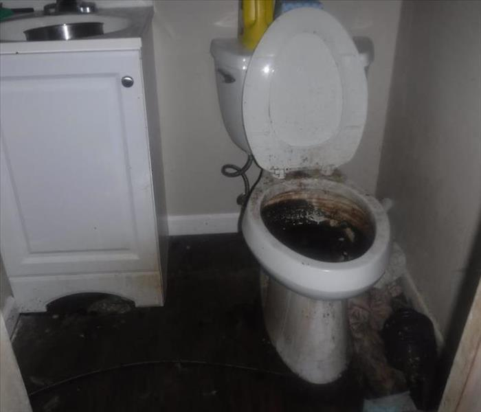 Image shows a bathroom with a toilet back up