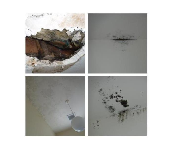 Photo shows different mold growing on ceilings and top of walls after the rain