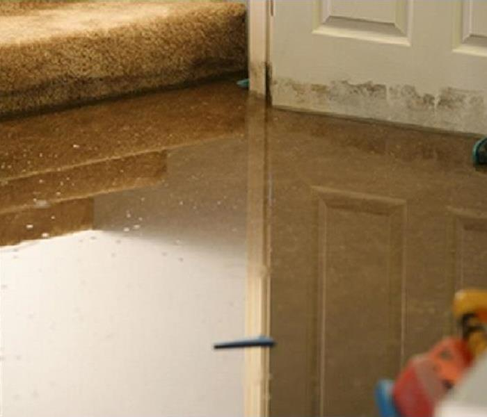Water Damage What Type of Water Loss do you have?